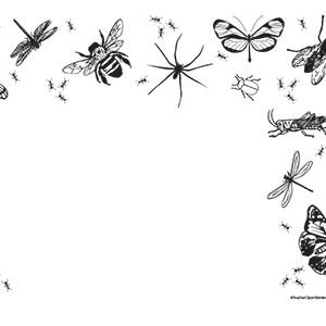 Bugs-of-Summer--Landscape--Blank