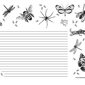 Bugs-of-Summer--Landscape--College-Rule