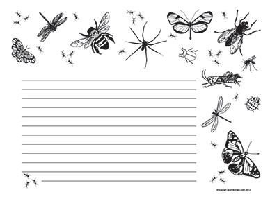 Bugs-of-Summer--Landscape--Wide-Rule