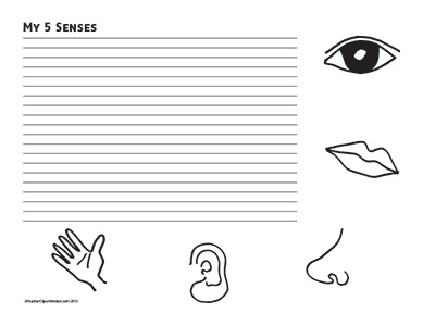 5 Senses- Landscape- College Rule- Teacher Clipart Borders ...