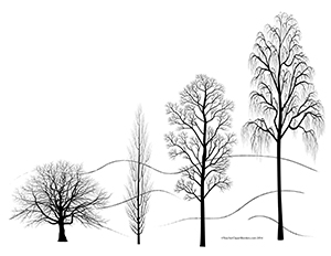 Winter Trees Landscape Blank