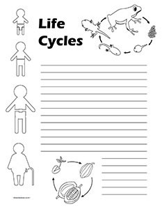 The Circle of Life.Life Cycles-